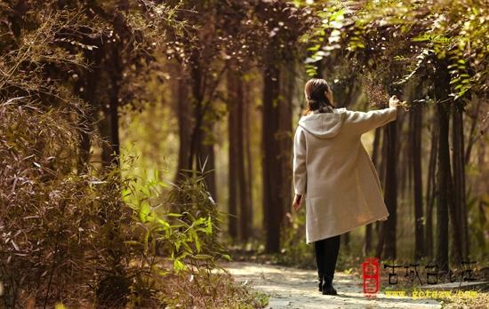 【图文】遗忘于释怀——台儿庄运河湿地初冬