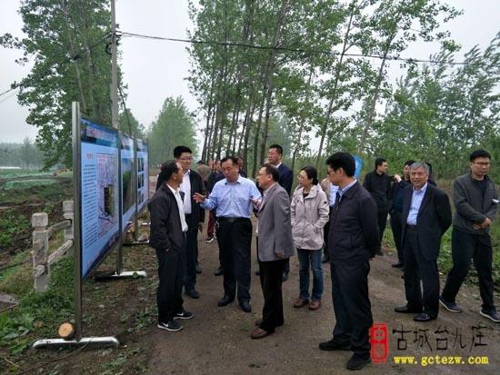 省交通运输厅公路局调研S241临徐线台儿庄叶庄至鲁苏界改建工程(图)
