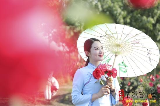 【图文】祥和庄园:月季花开,争奇斗艳